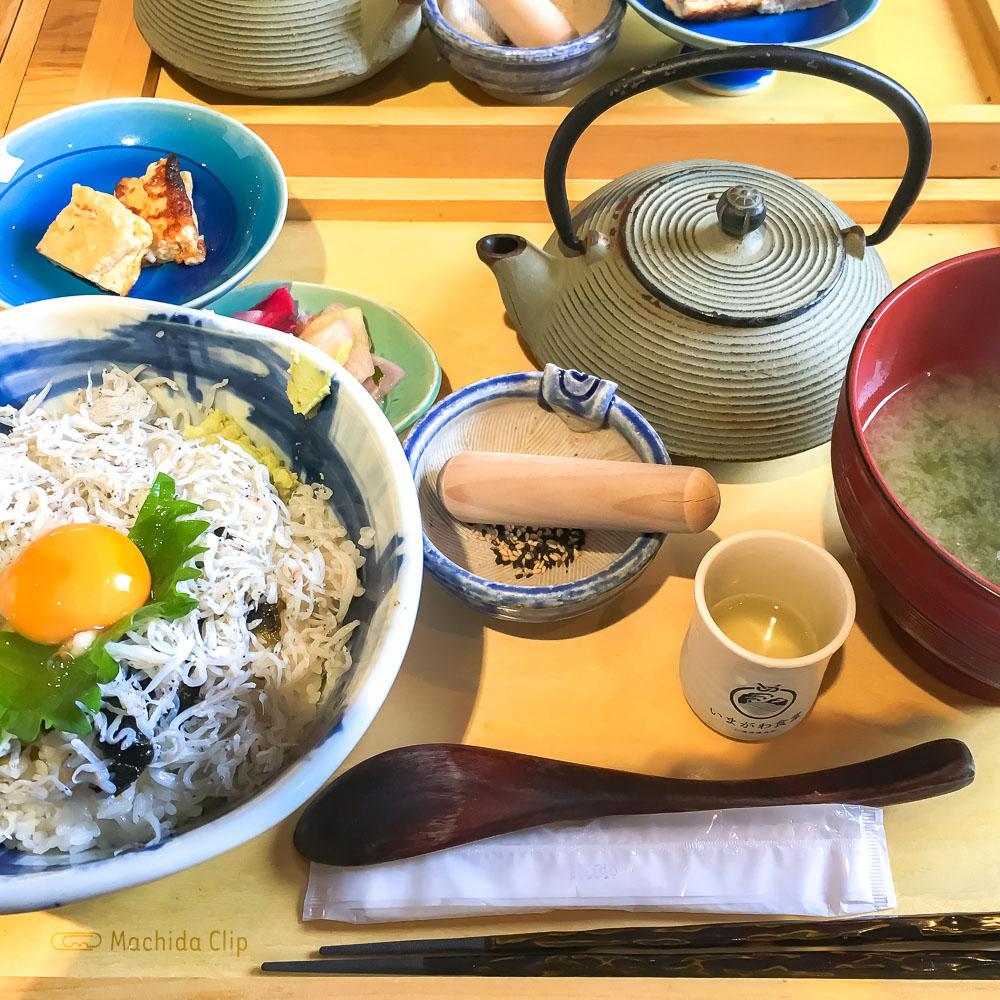 いまがわ食堂の「湘南釜揚げしらす丼」の写真