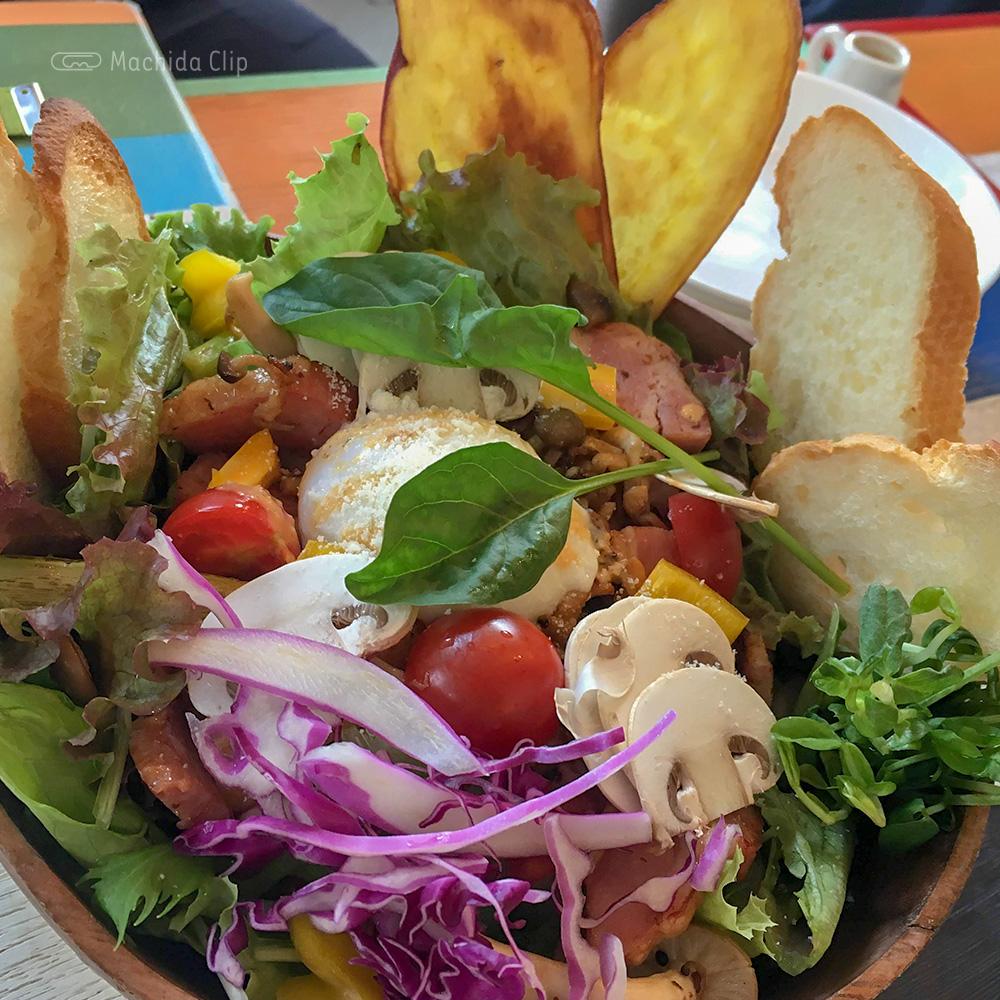 Cafe&BAR Monica&Adriano(モニカ&アドリアーノ)のサラダの写真
