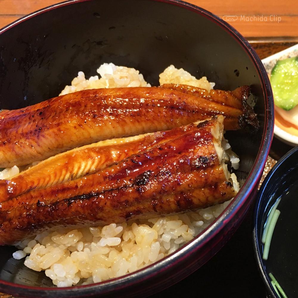 三右ヱ門(さんよも)のランチうな丼の写真