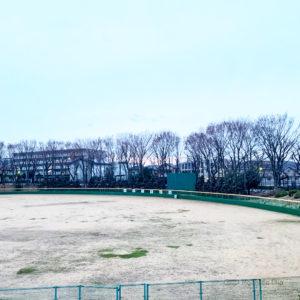 町田中央公園の桜&お花見情報2020!開花状況、桜祭り、駐車場について紹介の写真