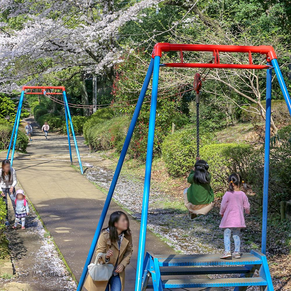 芹が谷公園の遊具の写真