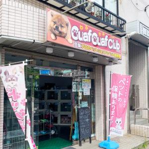 町田市 トリミング・ペットサロン 格安、口コミでおすすめのお店を紹介の写真